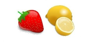 STRAWBERRIES AND LEMONS GRAPHIC - NO WORDING